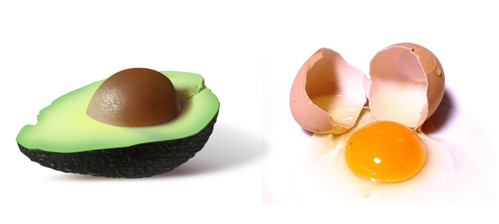 monoumættede fedtsyrer fra planter eller animalske fødevarer